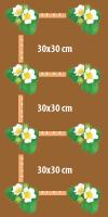odla-jordgubb-liten-yta